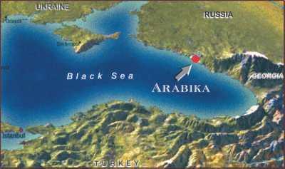 Arabika-Location